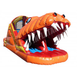 Happy Jump Gator Toboggan